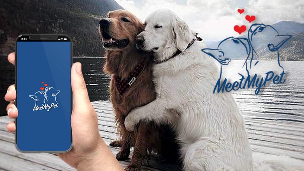 Da una Bergamasca nasce la prima App di incontri per cani